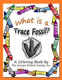 tracefossils
